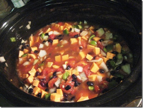 EverythinginSlowCooker